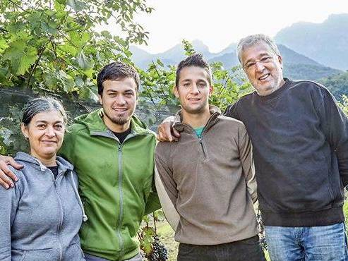 Vigneron bio Azienda Agricola Bianchi