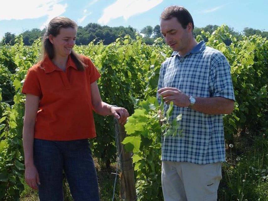 Vigneron bio domaine tripoz en bourgogne